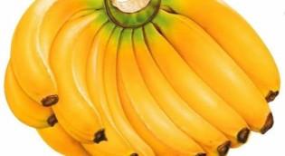 The Magical Effect of Banana Peel